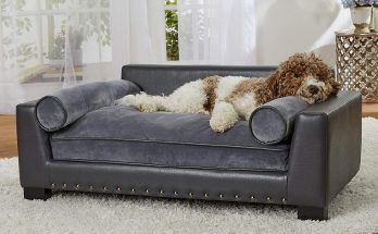 More of a subtle grey, yet comfortable looking sofa bed for dogs and cats