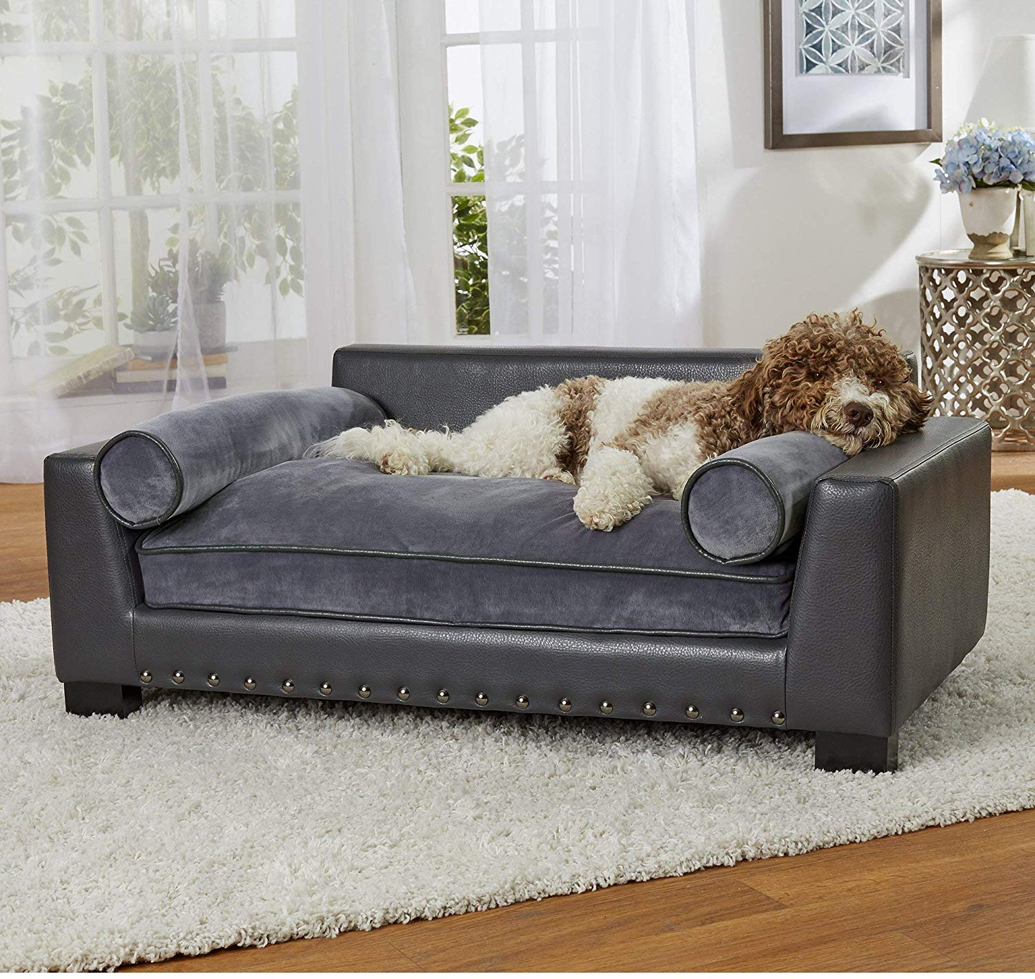 Best Couch For Pets Discover This